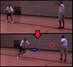 Basketball Vertical